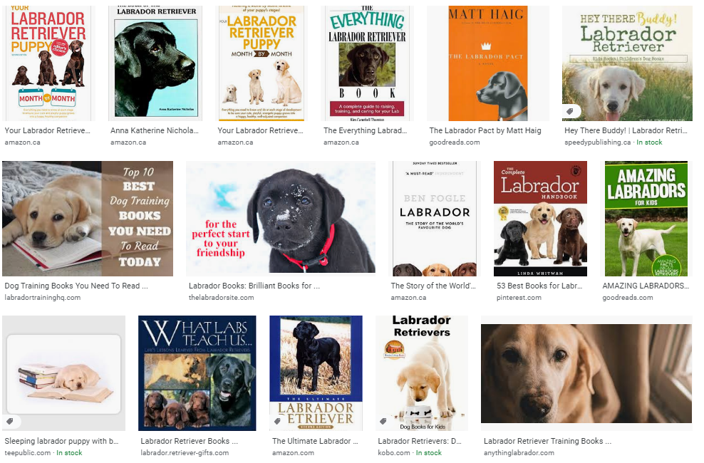 Google Images search results for labrador books.